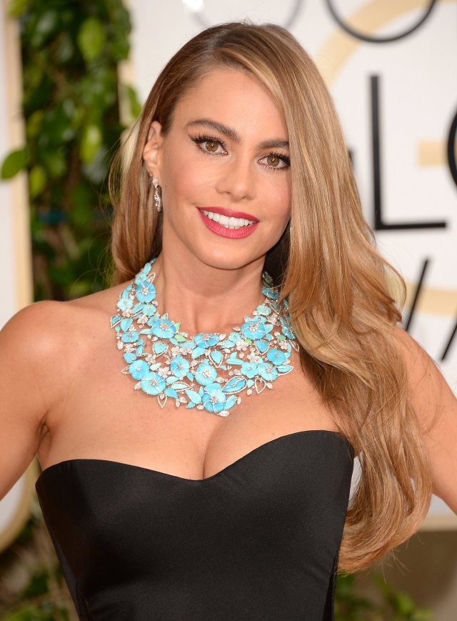 Sofia Vergara (Celebrity Post)