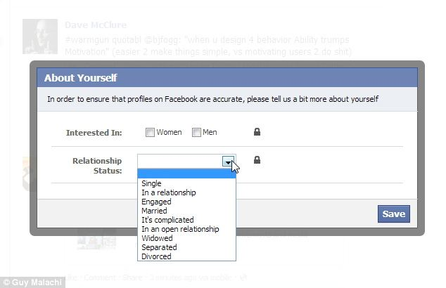 Facebook Relationship Status interface (Daily Mail UK)