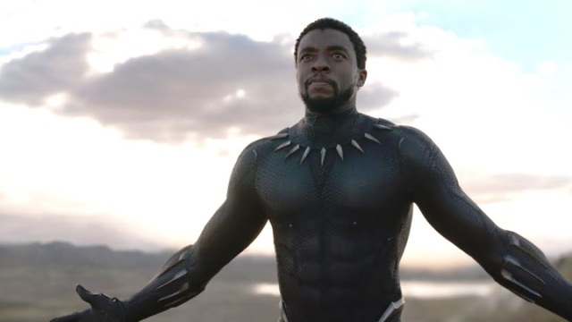 Chadwick Boseman in 'Black Panther' (Marvel Cinematic Universe Wiki)
