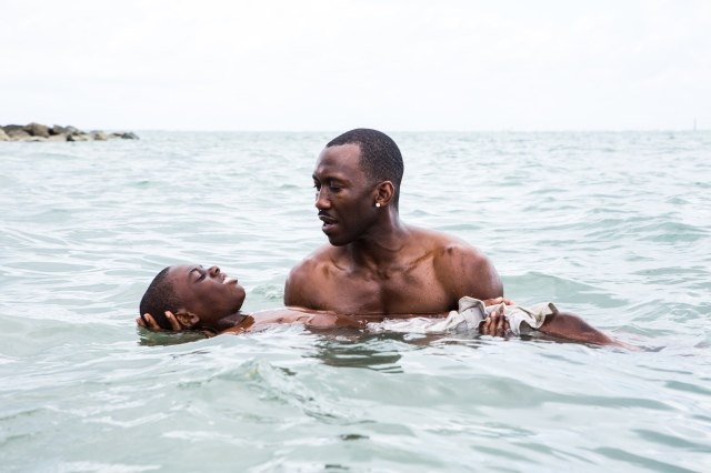 'Moonlight,' 2016 (Collider)